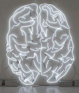 la Neurobiologia del Disturbo Post Traumatico da Stress