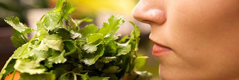 Corso di Mindful Eating: impariamo a nutrire il nostro corpo