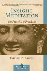 Insight Meditation. The Practice Of Freedom.