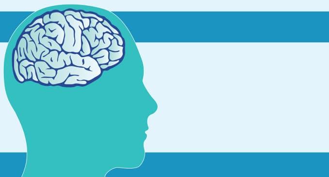 La Teoria Polivagale. Aspetti Teorici E Pratici Nelle Neuroscienze E Nel Neuroimaging