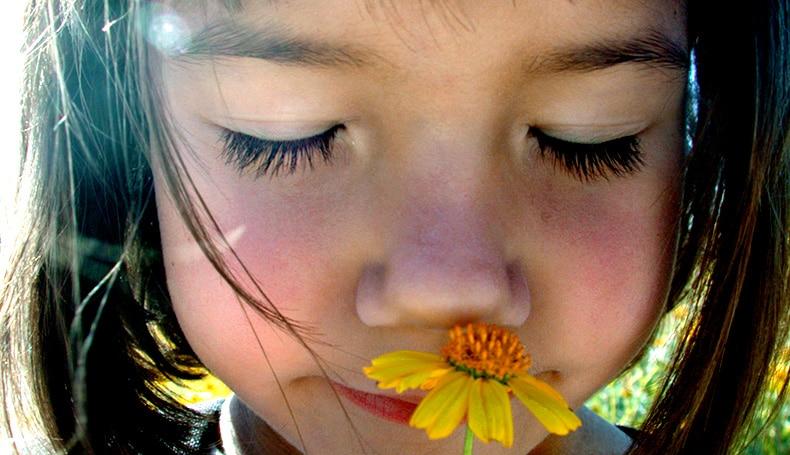 """La Mindfulness In Età Evolutiva E Il Programma """"Il Fiore Dentro"""""""
