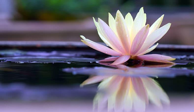Mindfulness: Dimensione Unica O Costrutto Multidimensionale?