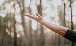 Giornata Di Introduzione Gratuita Allo Yoga Consapevole