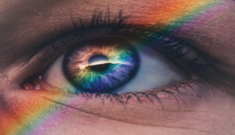 Torino: Coppie Omogenitoriali E Ragazzo Gay Cacciato Di Casa