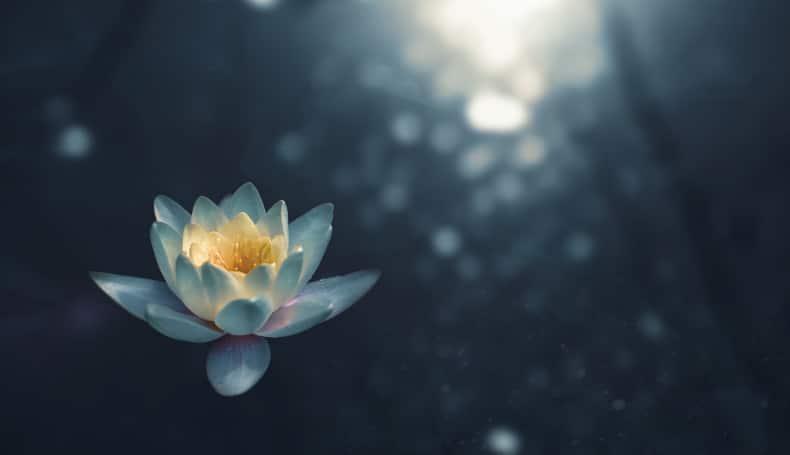 Meditare