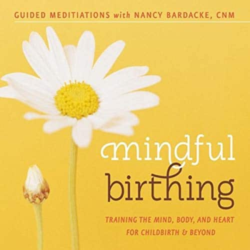 Mindful Birthing. Training The Mind, Body And Heart For Childbirth And Beyond