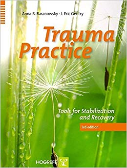 Trauma Practice: Tolls For Stabilization And Recovery