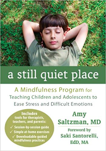 A Still Quite Place. A Mindfulness Program For Teaching Children And Adolescents To Ease Stress And Difficult Emotions