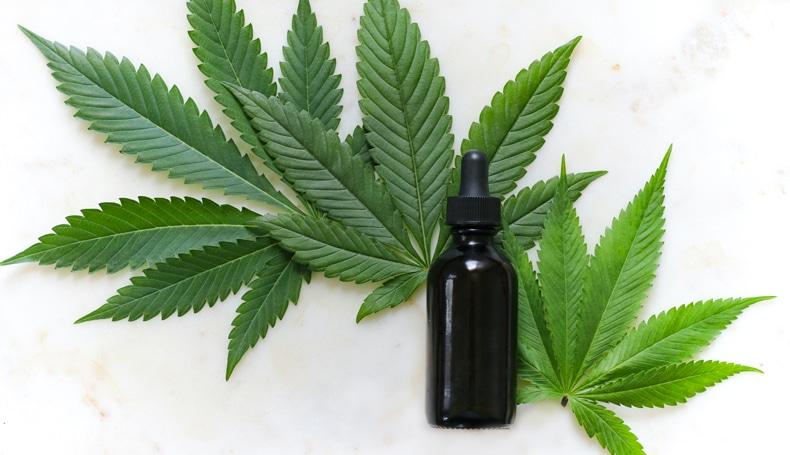 Cannabis E Il Sonno