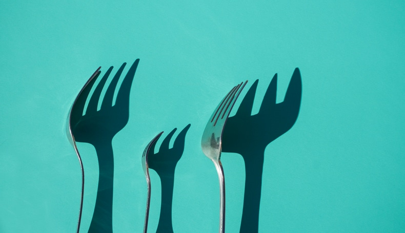 Ipotesi neurofiologica dell'obesità