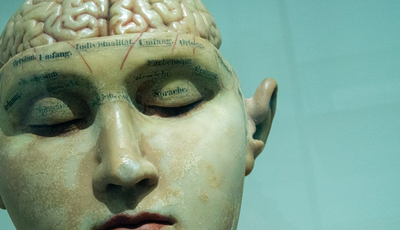Il Ruolo Del Cervelletto Nella Depressione