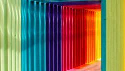 Giovani LGBTQ+ E Pandemia COVID-19