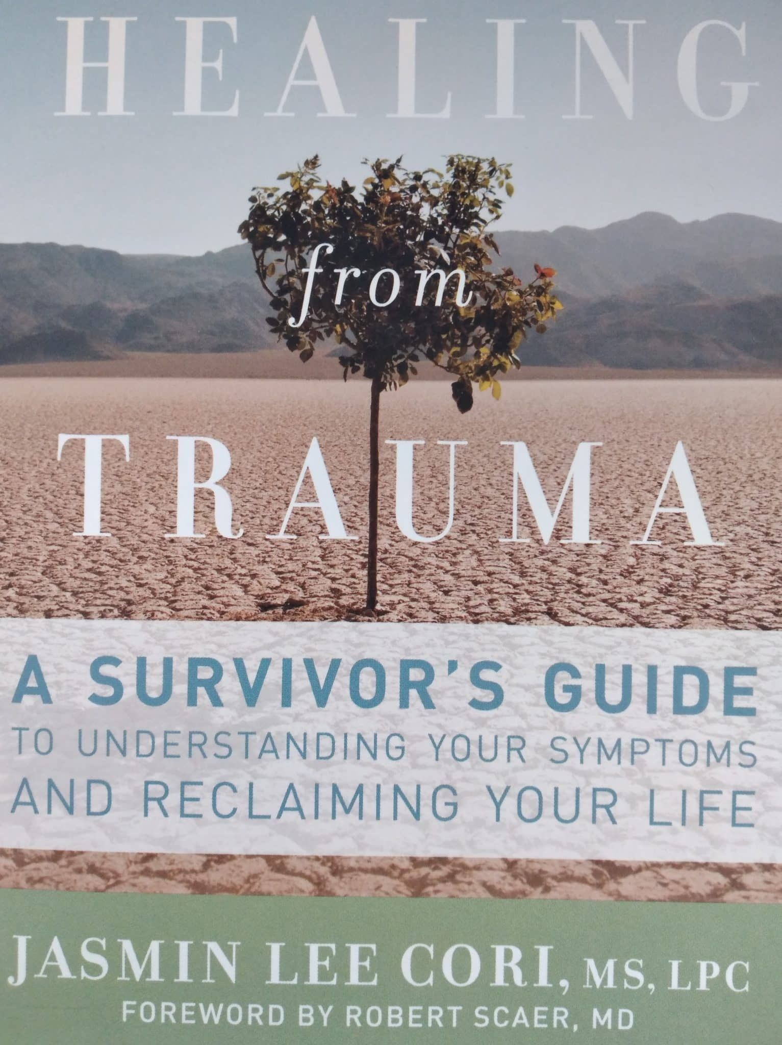 Healing From Trauma. A Survivor's Guide To Under Standing Your Symptoms And Reclaiming Your Life